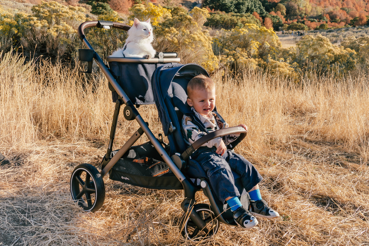 Cybex Gazelle S Double Stroller Review - Anna in the House